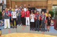 102. Salzburg, Austria, 25 - 26.06.2016, Austrian Junior Open 2016, karate